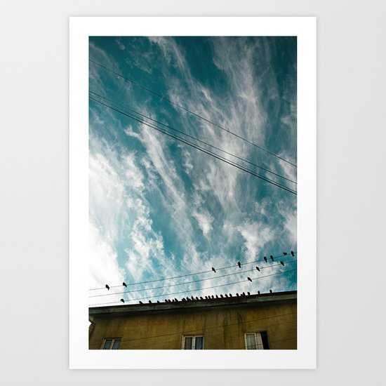Doves and Wire#2 Art Print