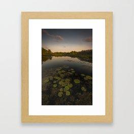 Water Lilly Landscape Framed Art Print