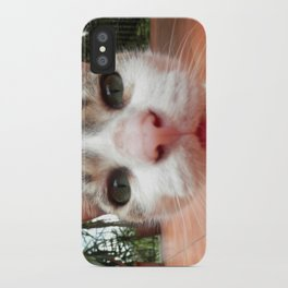 Frida the cat iPhone Case