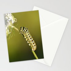 Catapillar on Queen Anns Lace - An Art Print Stationery Cards
