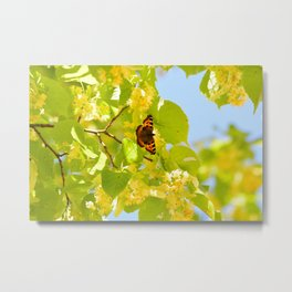 Blinding Butterfly Metal Print