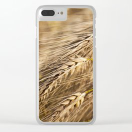 farm field cereals Clear iPhone Case