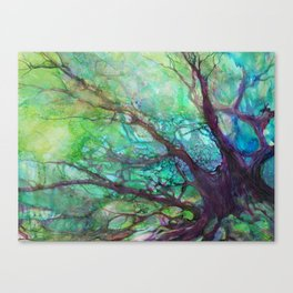 Dreaming Tree in the Evening Canvas Print