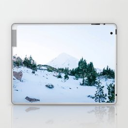 Cold Hearted Beauty Laptop & iPad Skin