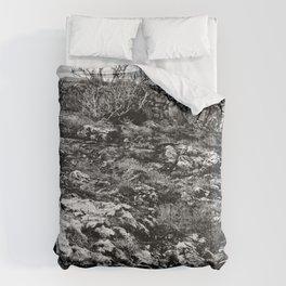 ... burrent ... Comforters