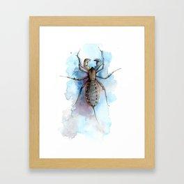 Vinegaroon Framed Art Print