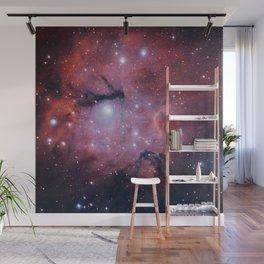 Star Formation Region Gum 15 Wall Mural