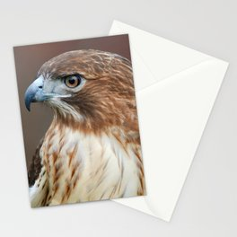 Red Hawk Profile Stationery Cards