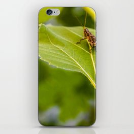 The Conqueror of Green iPhone Skin