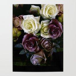 Roses Dark Moody Old Masters Poster