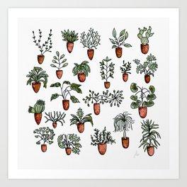 Succulent Houseplants in Terracotta Pots, Watercolor Cacti & Plant Wall Art Art Print