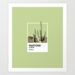 Pantone Series – Cactus Art Print