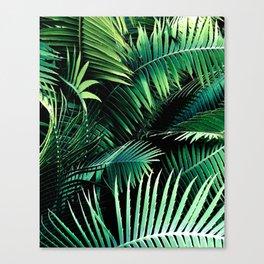 Winter Palms Canvas Print