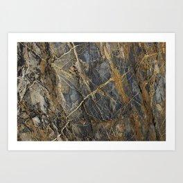 Natural Geological Pattern Rock Texture Art Print