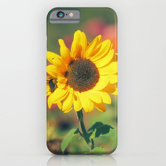 Bursting with Cheer iPhone & iPod Case