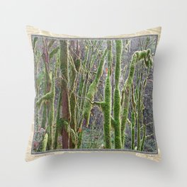 YOUNG RAINFOREST VINE MAPLES Throw Pillow