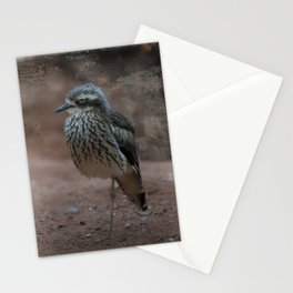 Bush Stone-Curlew Stationery Cards