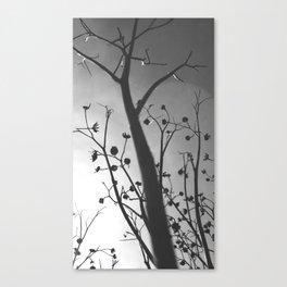 Pixies Twilight Whimsy Canvas Print