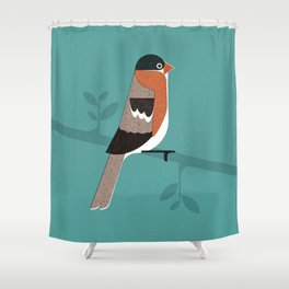Raitán (Asturian Robin) Shower Curtain