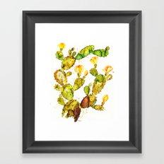 Cactaceae Framed Art Print