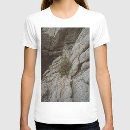 Mexico Mountainside II T-shirt
