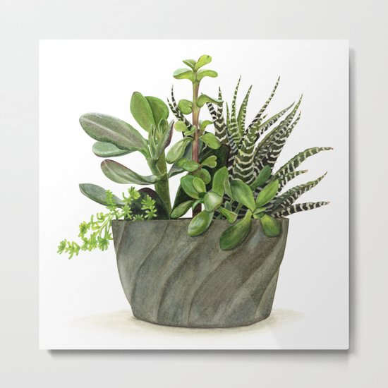 Watercolor Succulents Metal Print