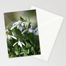 Floral Snowdrops! Stationery Cards