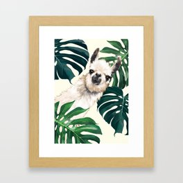 Sneaky Llama with Monstera Framed Art Print