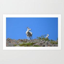 Ewe and Lamb Art Print