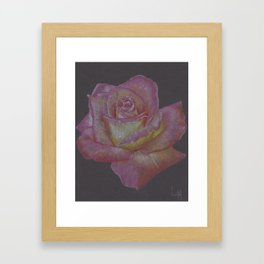 Pink and Yellow Rose Framed Art Print