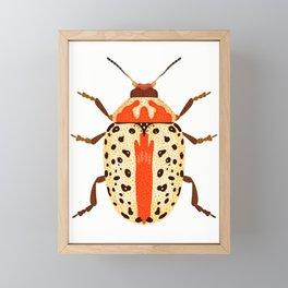 White and Orange Beetle Framed Mini Art Print