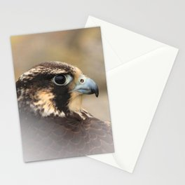 Vignetted Profile of a Peregrine Falcon Stationery Cards