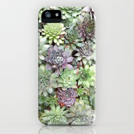 Desert Flower II iPhone Case