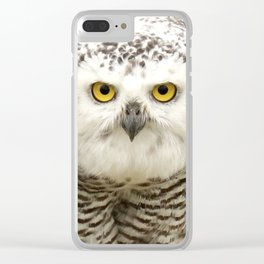 Laying down the law Clear iPhone Case