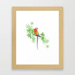 Tropical Parrot Summer Framed Art Print