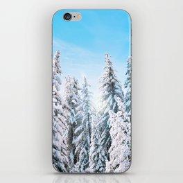 wintertime iPhone Skin