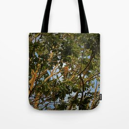 First of the Forest Tote Bag