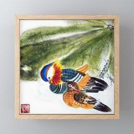 Mandarin Ducks Framed Mini Art Print