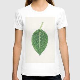 Ficus benghalensis T-shirt