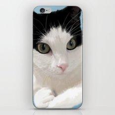 Pretty Little Kitty iPhone & iPod Skin