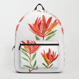 Safari Sunset - Conebush Backpack