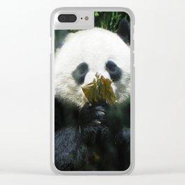 Peekaboo Panda Clear iPhone Case