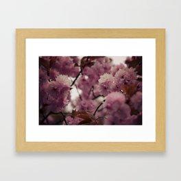 Mount Koya #5 Framed Art Print