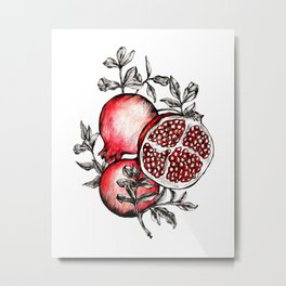 Pomegranate heaven hand-drawn illustration Metal Print