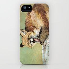Sleepy Fox iPhone Case