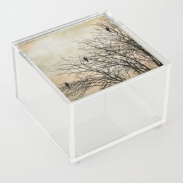 Three Birds Acrylic Box