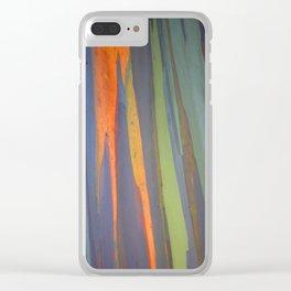 Rainbow Eucalyptus Magic Clear iPhone Case