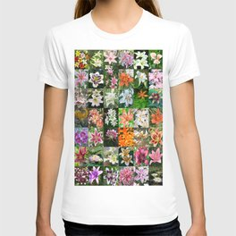Lily Montage T-shirt