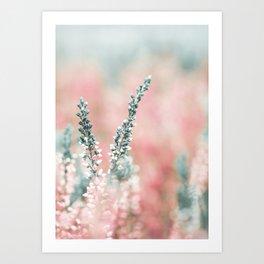 Pretty in Pink - Flowers Art Print