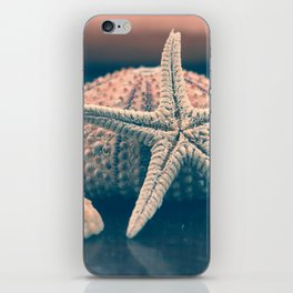 seashells 4 iPhone Skin